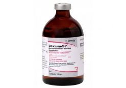 DEXIUM SP - 4mg